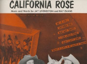 california-rose-from-the-paramount-picture-son-of-paleface-special-picture-release_cover